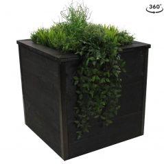 Zwarte houten plantenbak 60x60x60 cm. met planten
